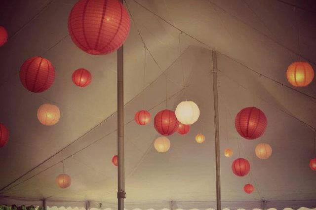 Where to find Japanese Lanterns 60x Tent Light in Plattsburgh