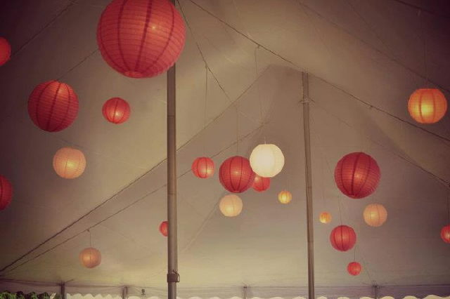Where to find Japanese Lanterns 40x Tent Light in Plattsburgh